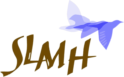 South Lane Mental Health Logo